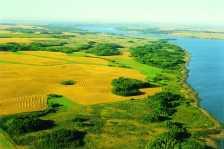 Manitoba Fields (Photo by: Travel Manitoba - Flickr)
