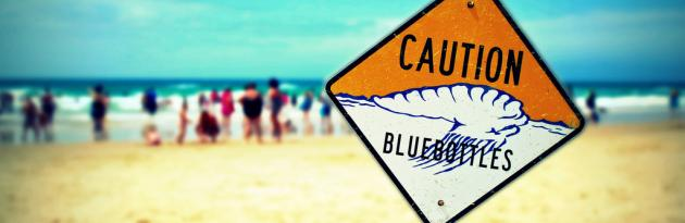Life's a Beach: Safety On The Sand and Surf - MyDriveHoliday