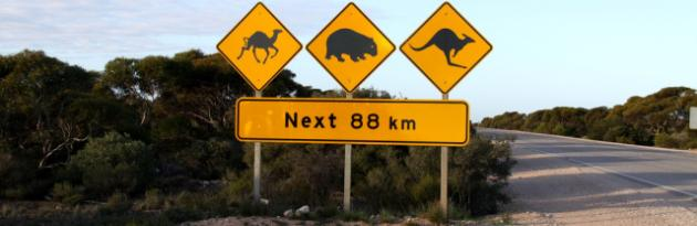 Tips For Driving In Australia - MyDriveHoliday