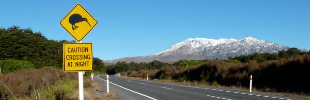 Driving Tips For New Zealand - MyDriveHoliday