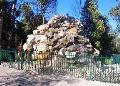 Otways Tourist Park - MyDriveHoliday