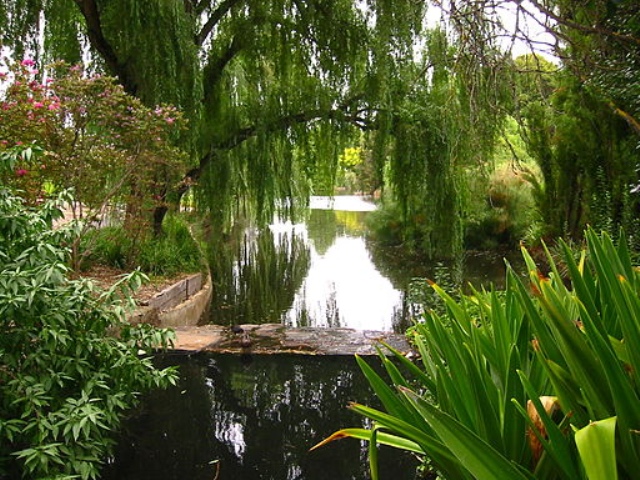 Adelaide botanic garden mydriveholiday for Adelaide gardens